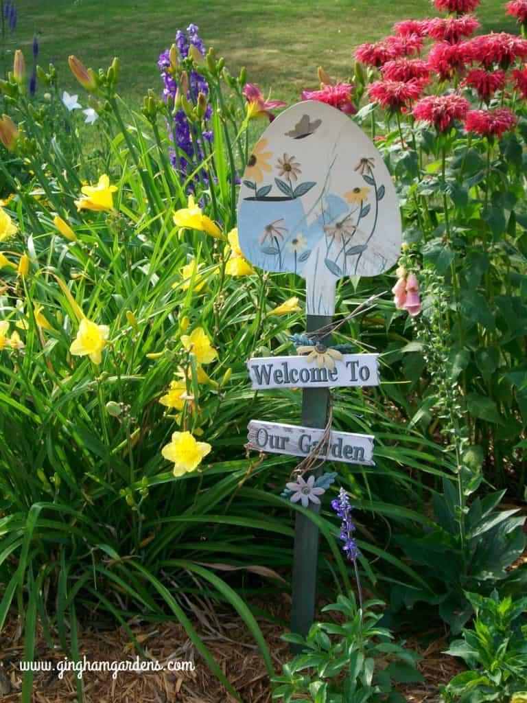 Happy returns daylilies, bee balm, delphinium in a zone 4 flower garden