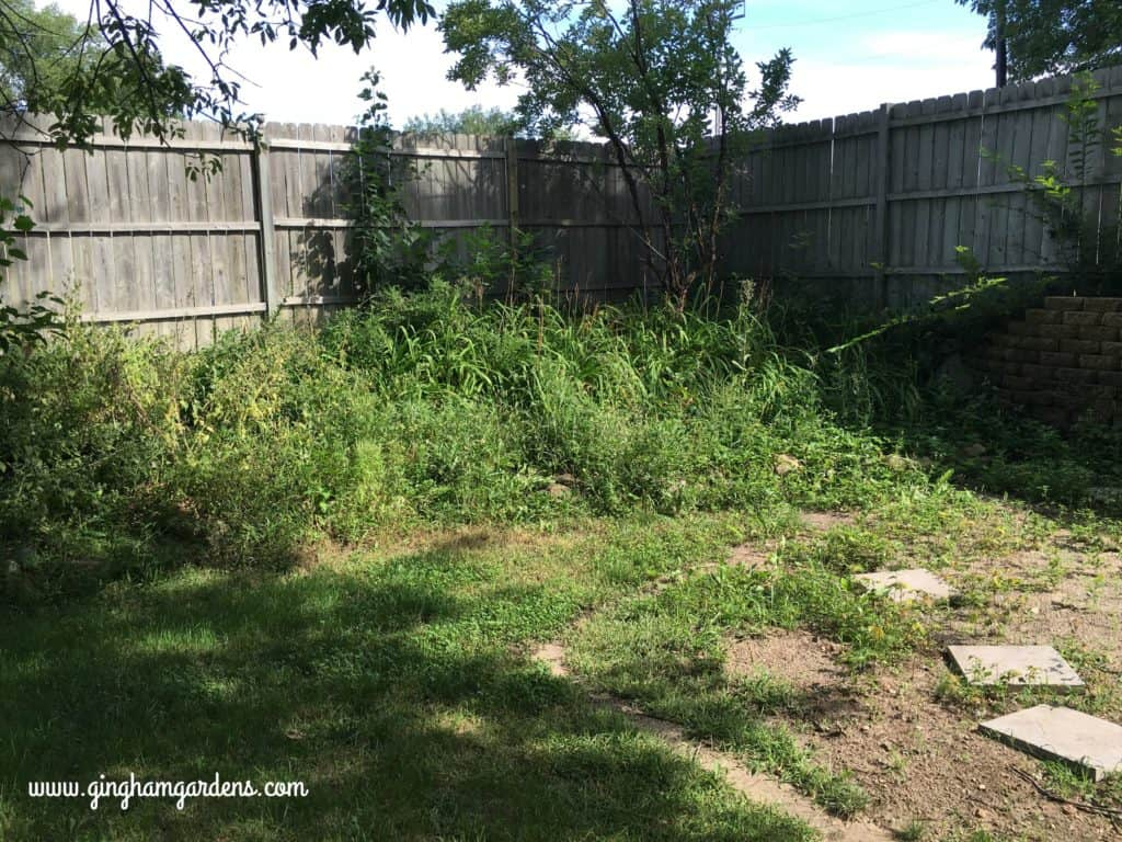 Garden Makeover - the ugly before!