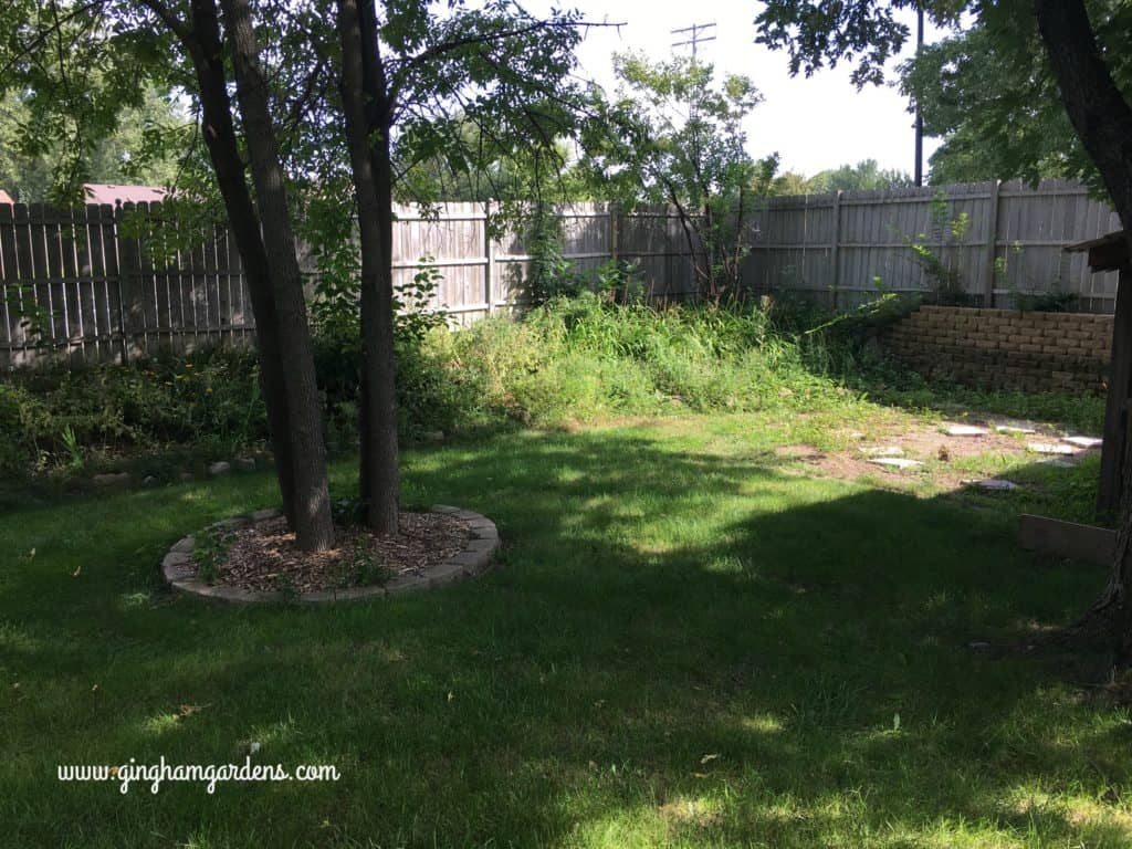 Garden Makeover - the weed pit before picture.