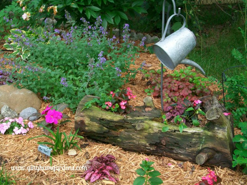 Hollowed out log used as a planter.