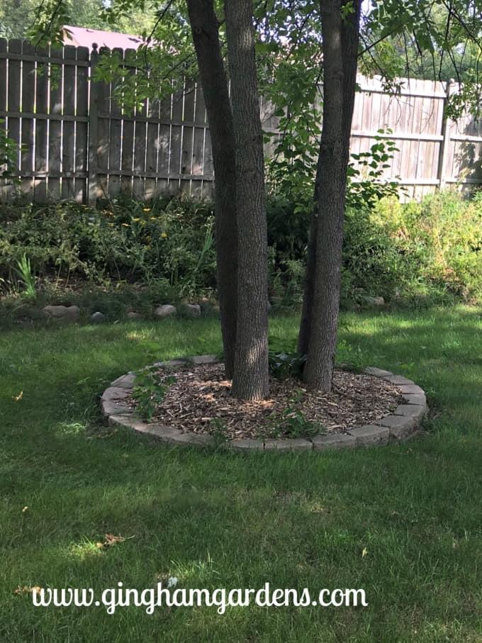 Easy Garden Makeover - Before