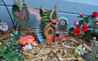 Miniature Gnome Shade Garden