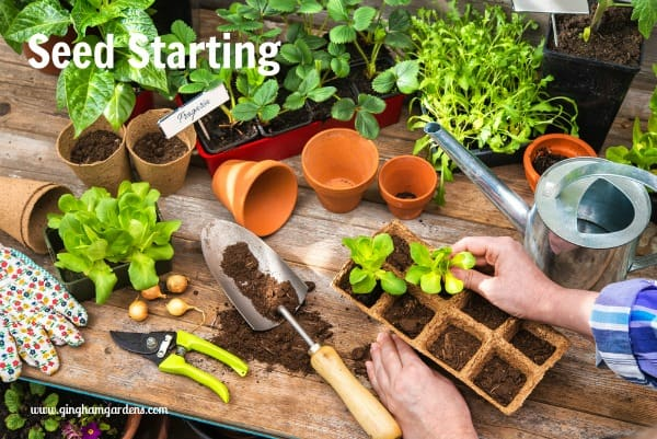 Seed Starting Instructions