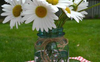 Bouquet of Shasta Daisies in an Antique Mason Jar