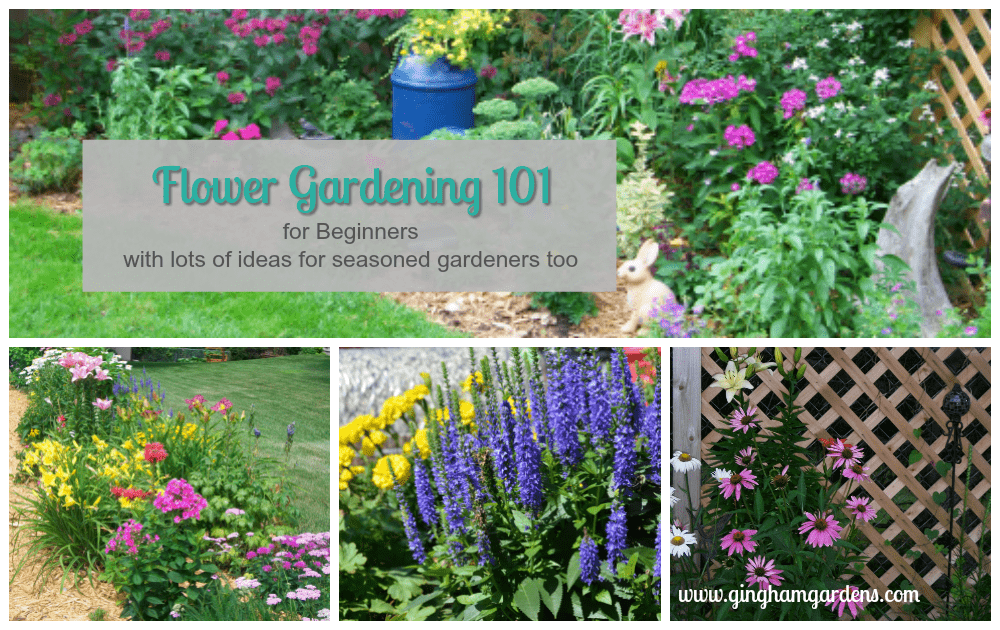 Flower Gardening 101 for Beginners and lots of ideas for seasoned gardeners too.