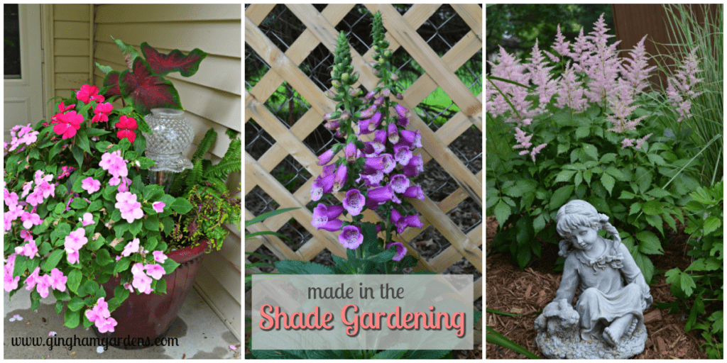Made In The Shade Gardening