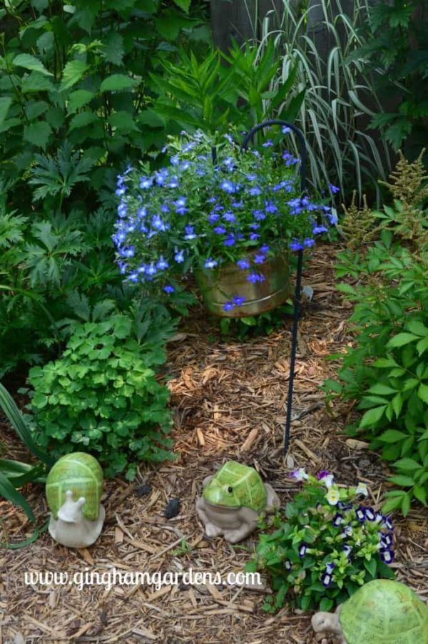 Galvanized pail filled with lobelia hanging from a shepherd's hook