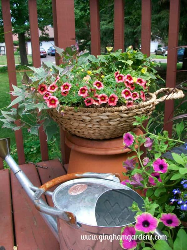 Garden Display featuring a wicker basket of flowers.
