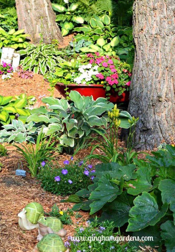 Shade garden featuring an old upcycled wheelbarrow as a planter.