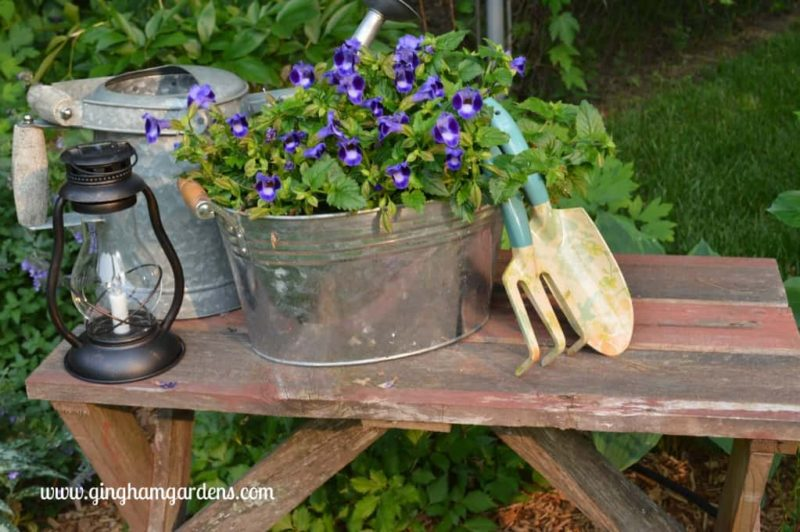 Garden Vignette featuring an Upcycled Barnwood Bench