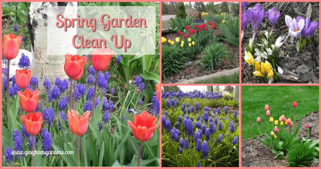 Spring Gardens - Clean Up Tips