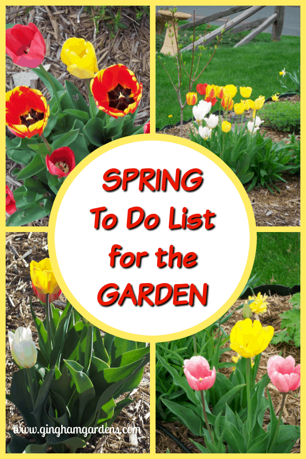 Spring To Do List for the Garden