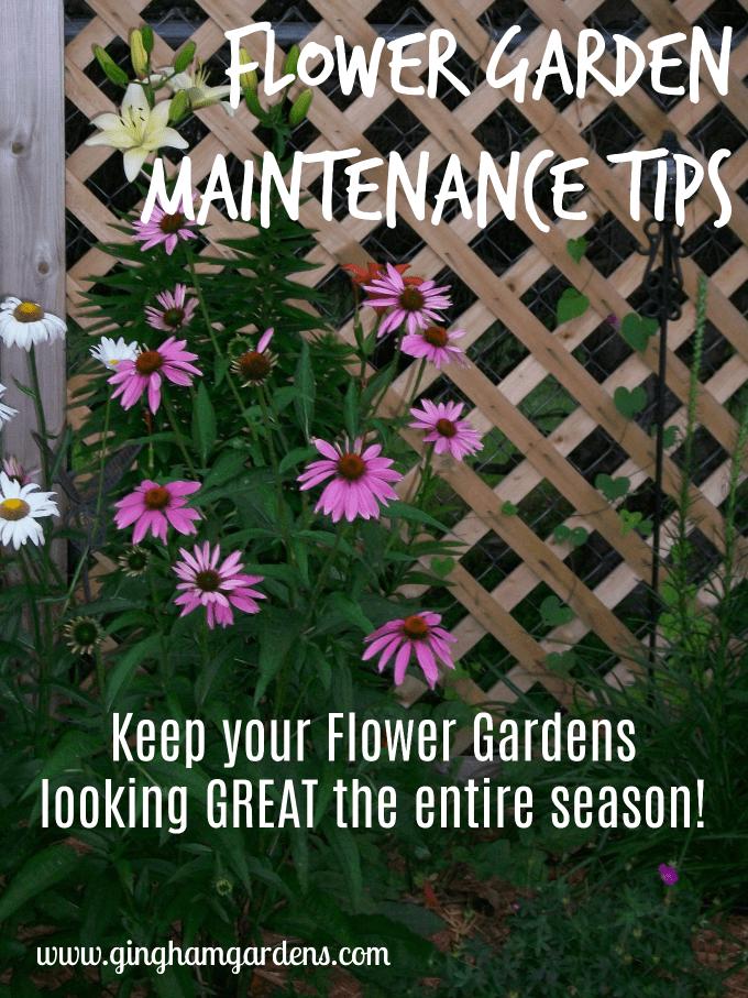 Flower Garden Maintenance Tips