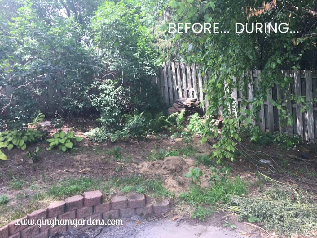 Shade Garden Makeover - Before
