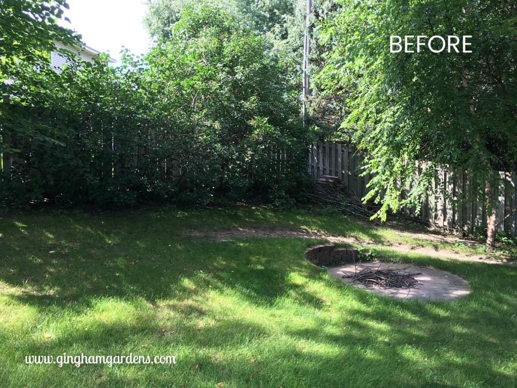 Shade Garden Makeover Before