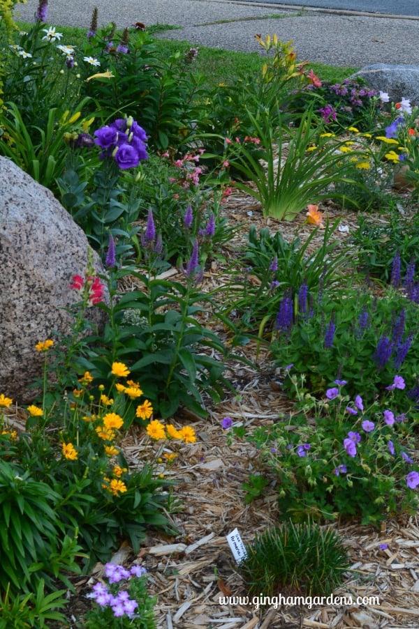 July Flower Garden Tour