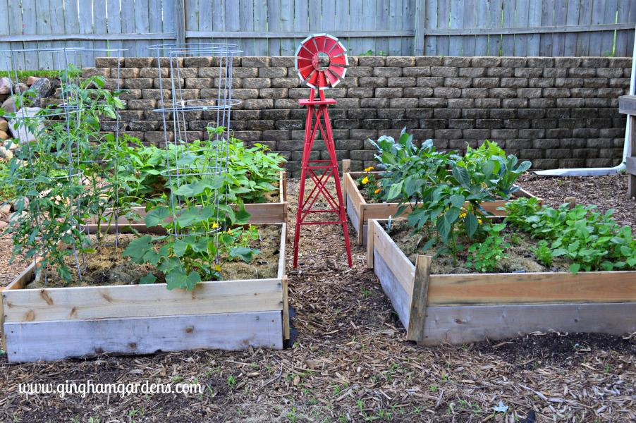 Raised Vegetable Garden Beds
