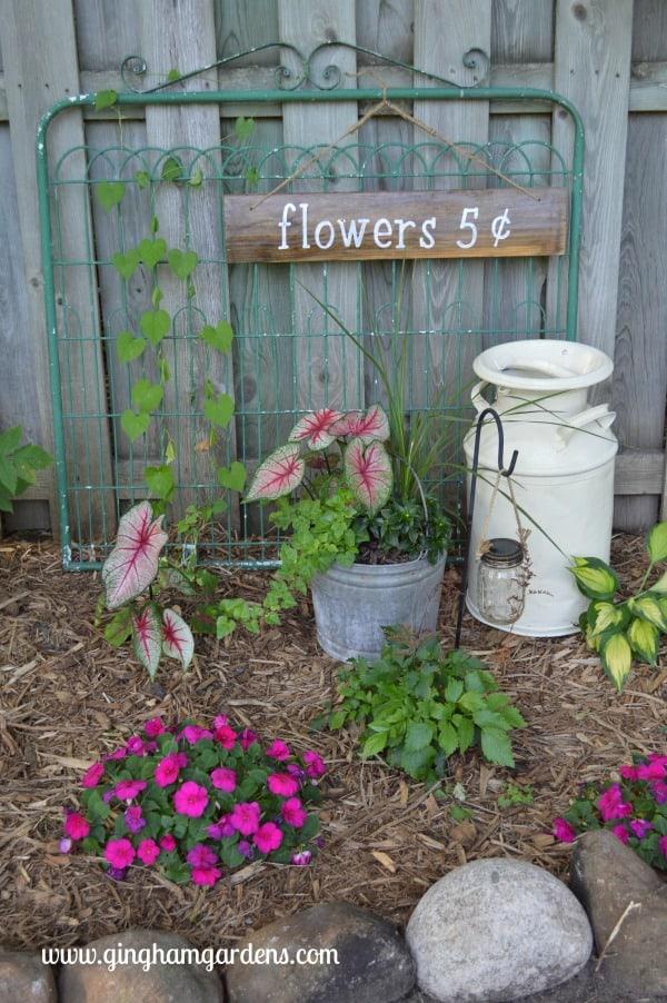 Garden Vignette Featuring a Garden Gate, Vintage Milk Can & Galvanized Bucket