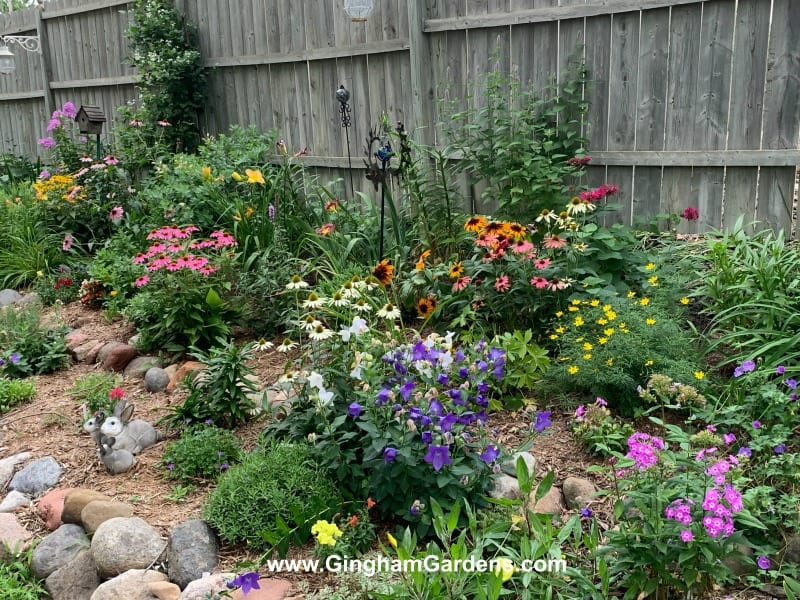 Tips For Gardening In Late Summer Plus A Garden Tour Gingham