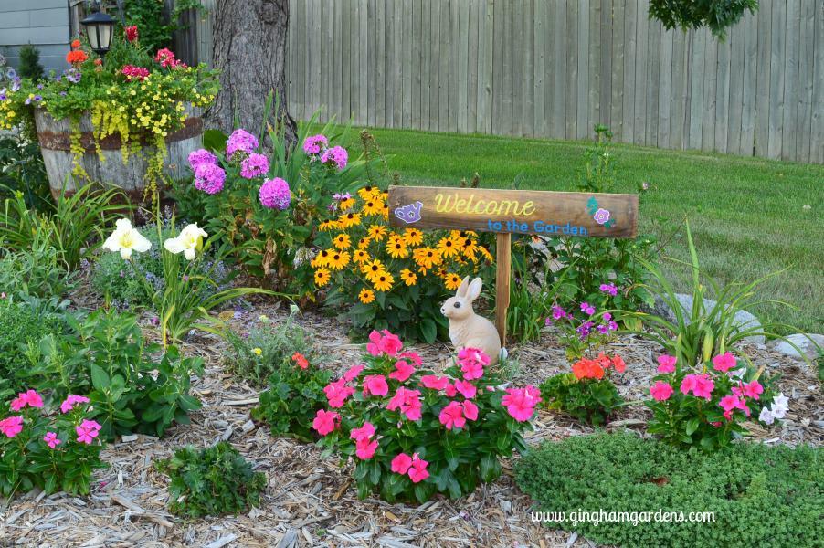 Flower Garden - End of Summer Butterflies & Blooms