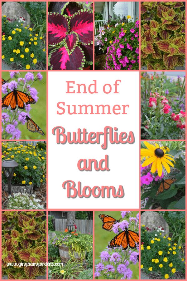 End of Summer Butterflies & Blooms Garden Tour