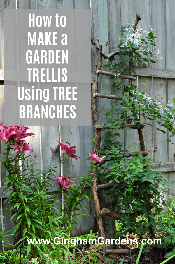 How to Make a Garden Trellis Using Tree Branches