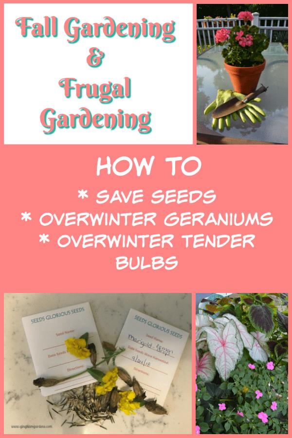 Tips for Fall Gardening & Frugal Gardening
