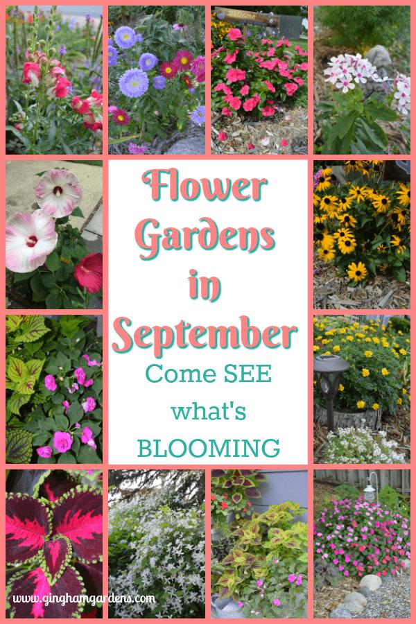 Flower Gardens in September