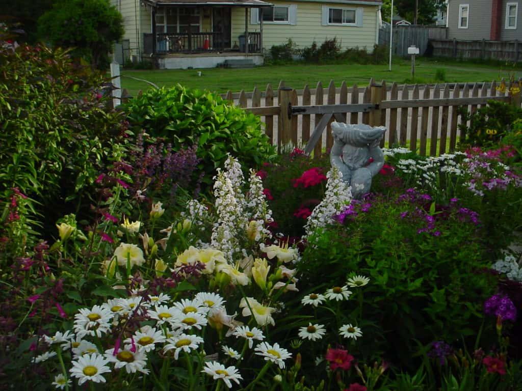 Flower Garden - Gingham Gardens Readers' Garden Tour