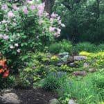 Spring Garden - Gingham Gardens Readers' Garden Tour