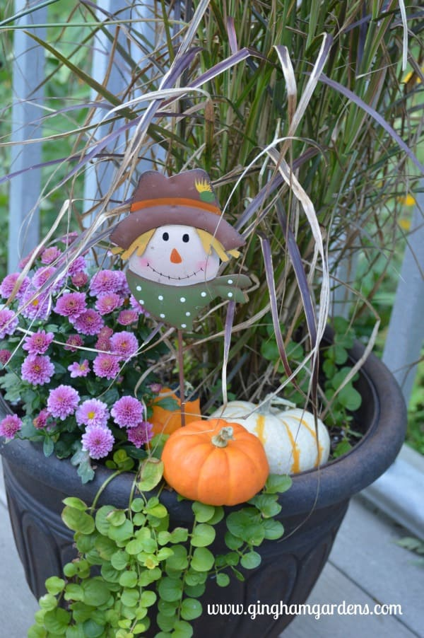 Fall Planter - Transitioning Container Gardens to Fall