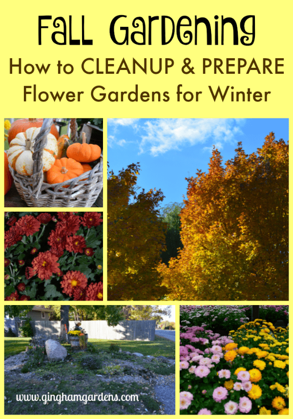 How to Cleanup & Prepare Flower Gardens for Winter