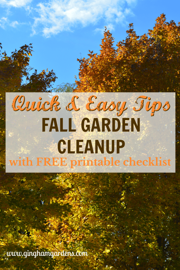 Quick & Easy Tips for Fall Garden Cleanup