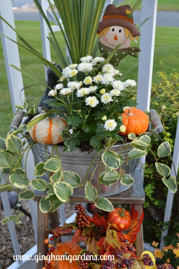 Fall Decor - Transitioning Container Gardens to Fall
