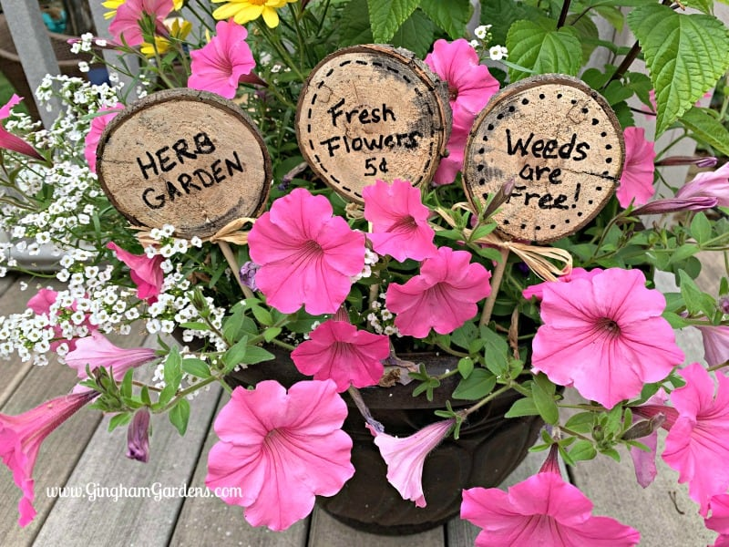 DIY Plant Tags - Gingham Gardens