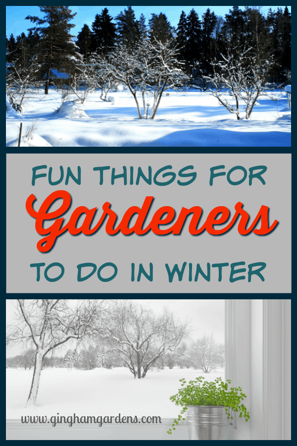 Fun Things for Gardeners to do in Winter