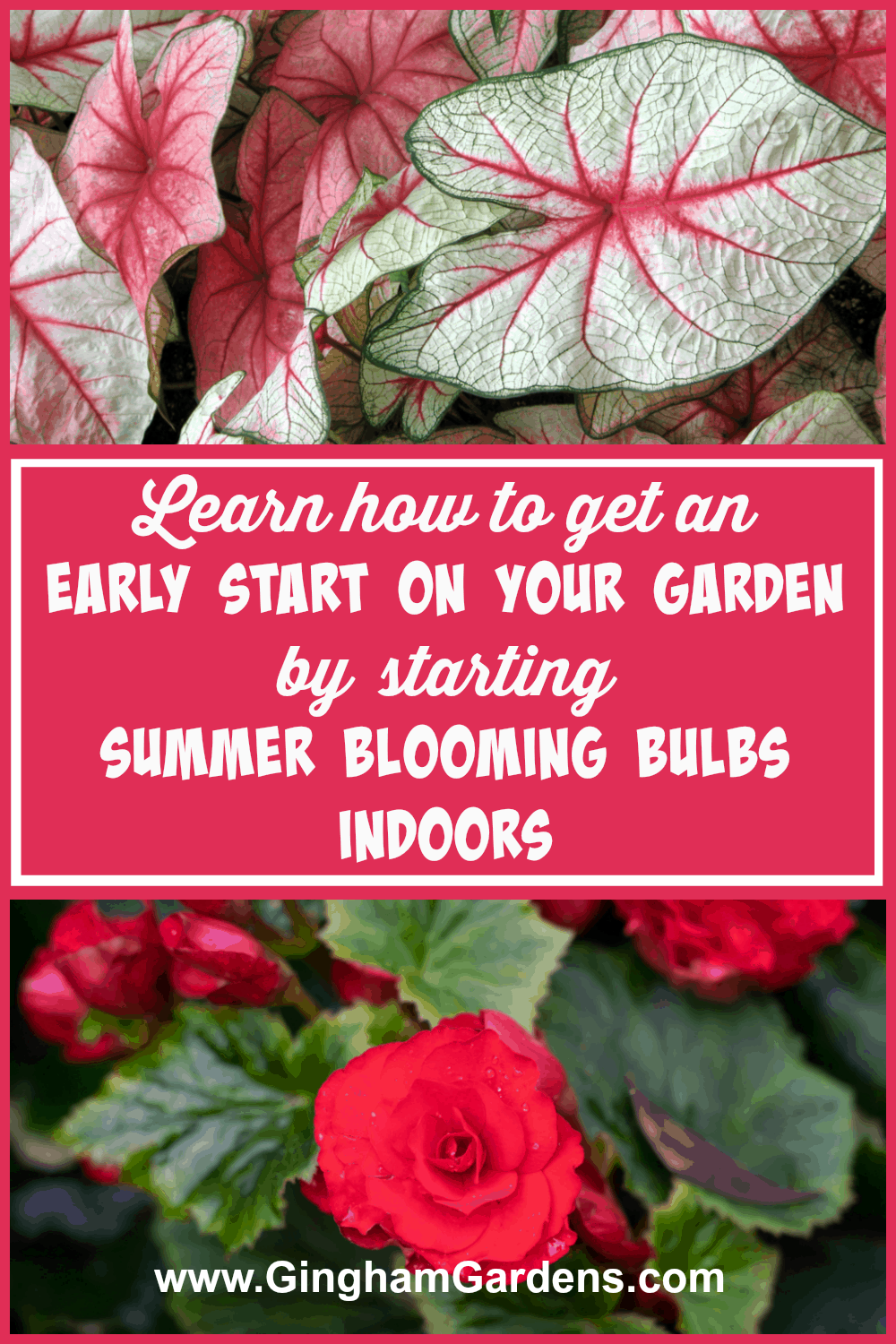 Get an Early Start on Your Garden