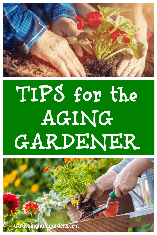 12+ Tips for the Aging Gardener