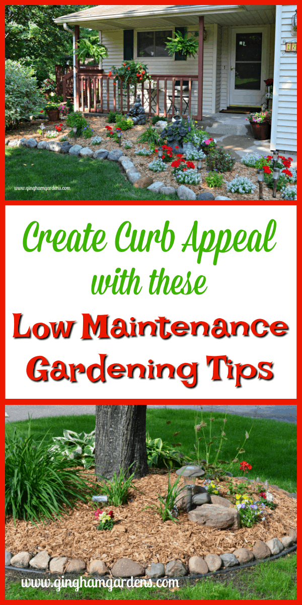 Create Curb Appeal - Low Maintenance Gardening Tips