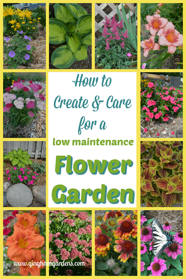 Low Maintenance Flower Garden - Learn How to Create & Care For