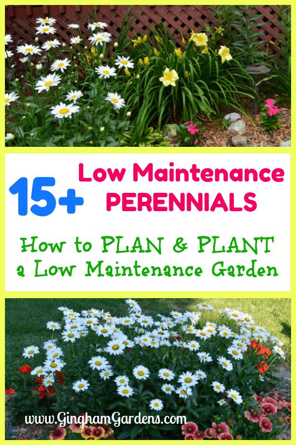 Low Maintenance Perennial Flower Gardens