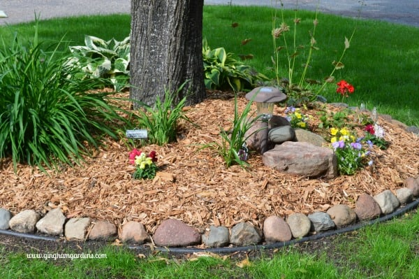 Tree Ring Low Maintenance Flower Garden
