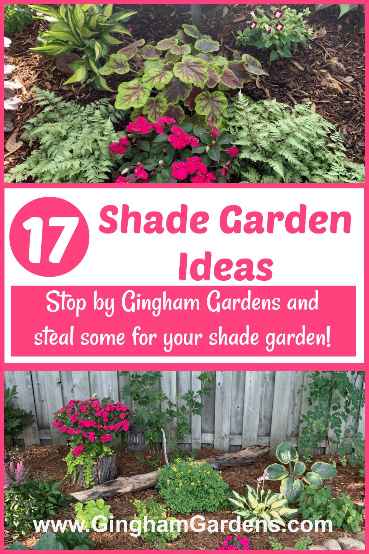 Shade Gardens with Text Overlay - 17 Shade Garden Ideas