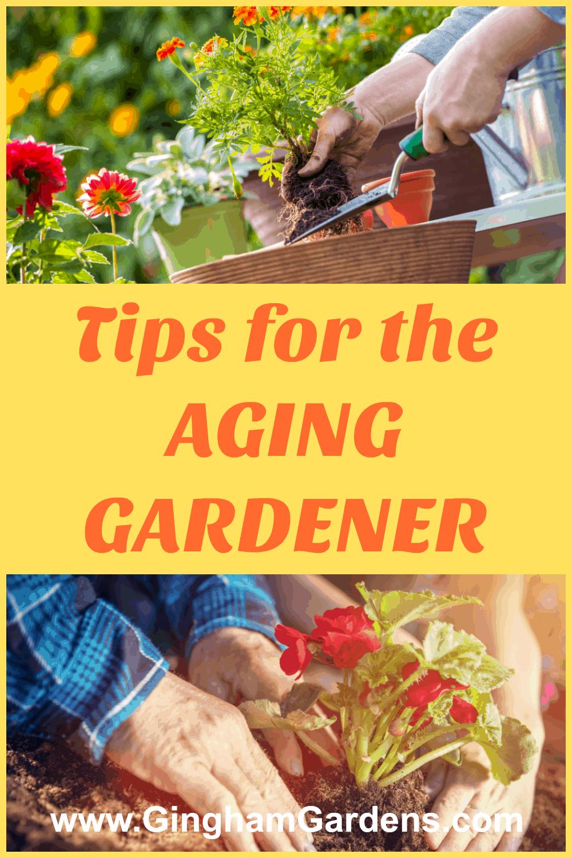 Tips for the Aging Gardener