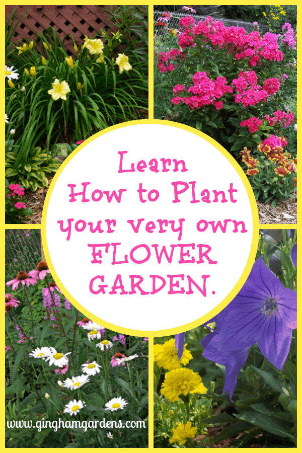 Flowers - Learn How to Plant your very own Flower Garden