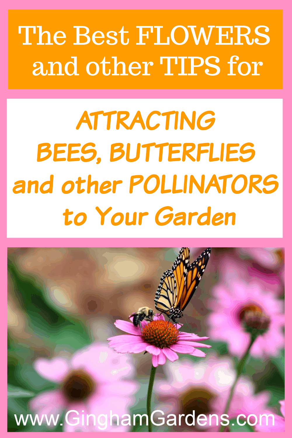 Image of a butterfly on a flower with text overlay - The Best Flowers and tips for attracting butterflies and other pollinators to your garden