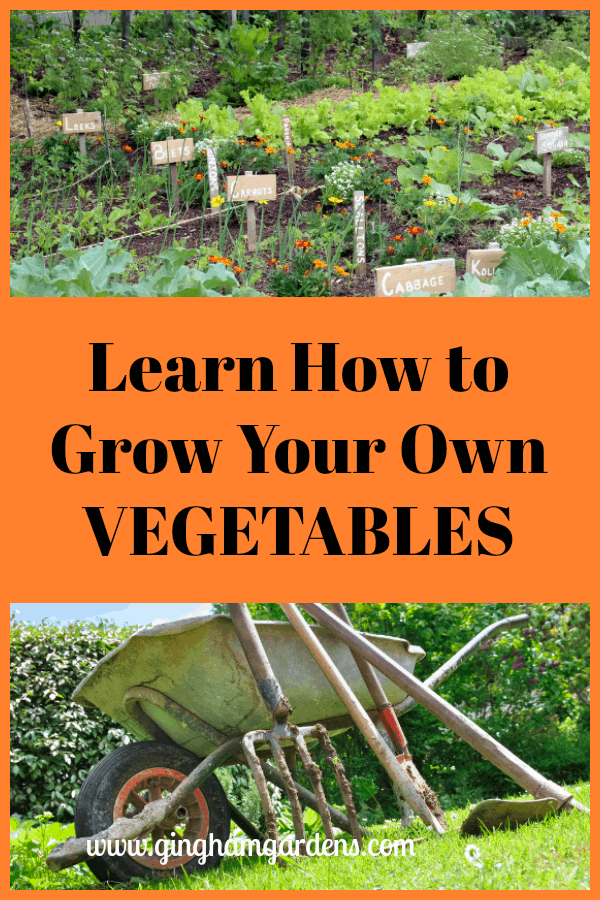 Vegetables - Learn How to Grow Your Own