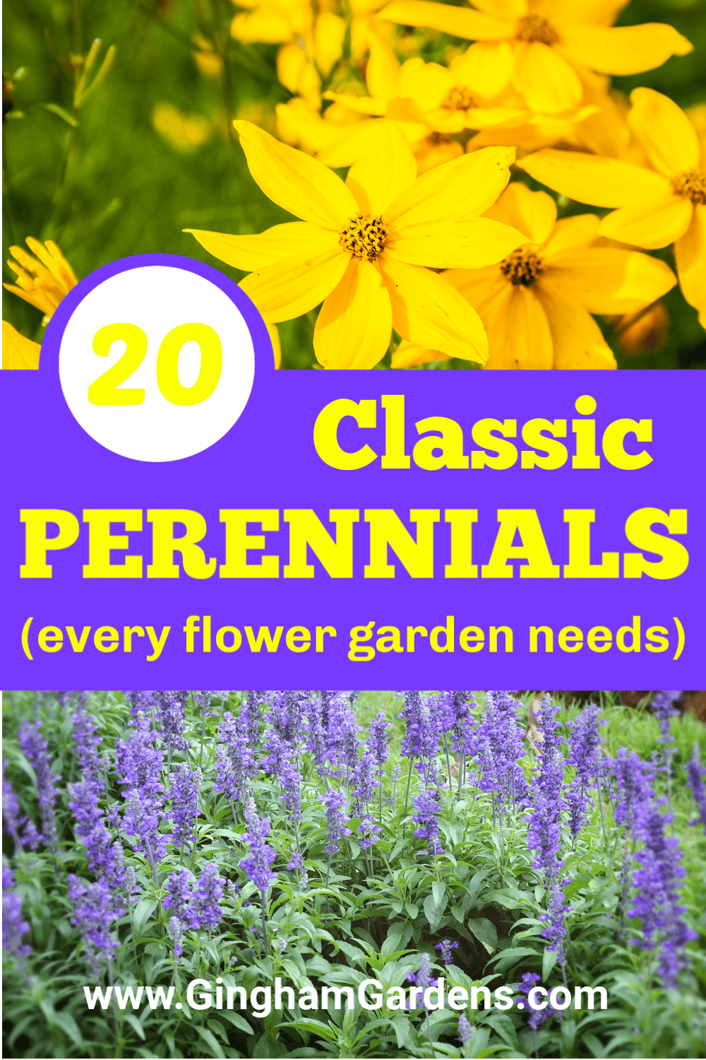 Images of Flowers with Text Overlay - 20 Classic Perennials (every flower garden needs)