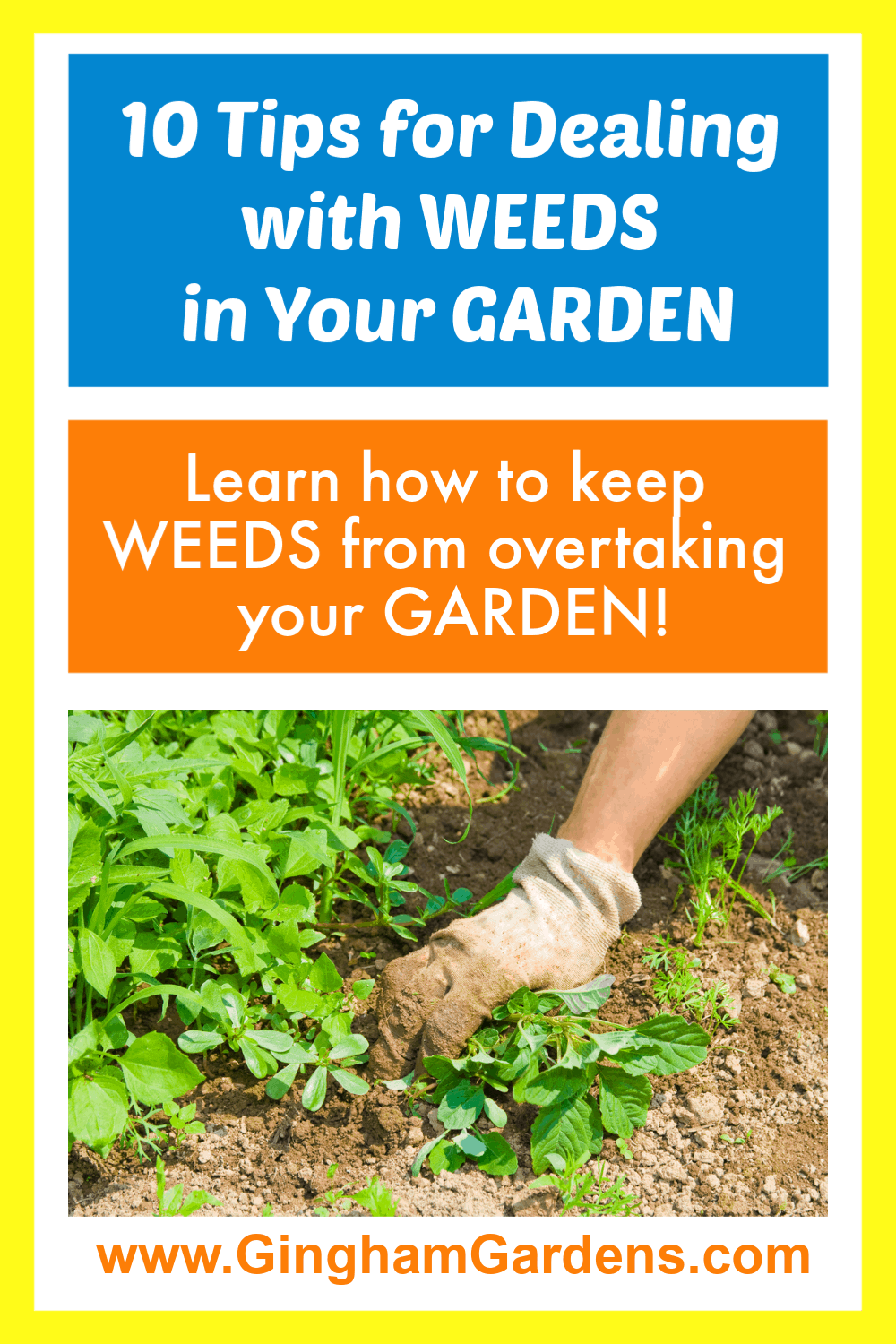 Image of gardener pulling weeds with text overlay - 10 tips for Dealing with Weeds in your garden