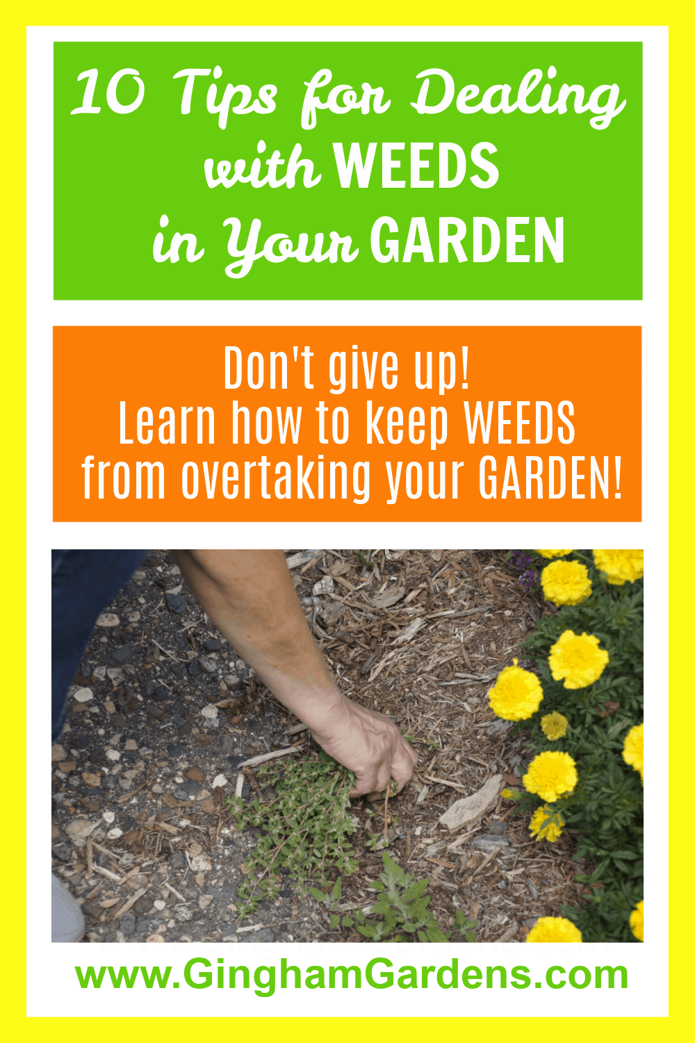 Image of Gardener pulling weeds with text overlay - How to Deal with Weeds in Your Garden